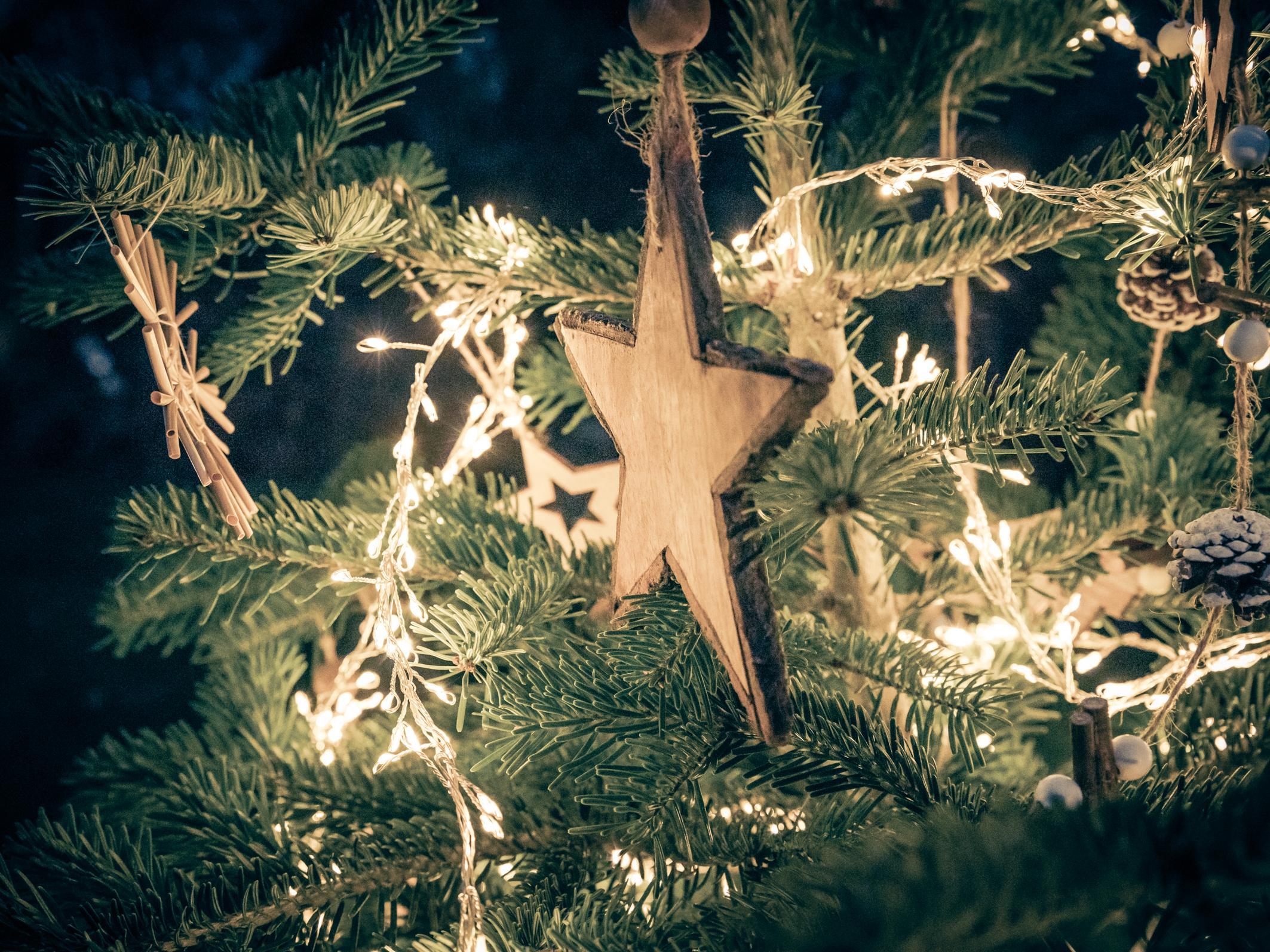 Fotoshooting Weihnachten 2020 Pegnitz